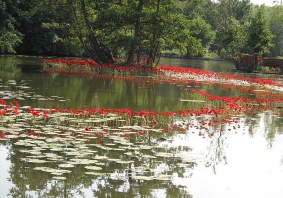 Migratory garden